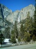 древесины водопада muir Стоковое Фото