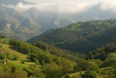древесины горы стоковые изображения rf