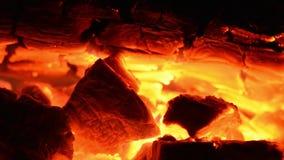 Древесины горят внутри камина сток-видео
