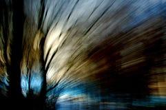 древесины зимы Стоковые Фотографии RF