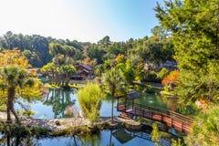 Древесины и сады озер кедр Стоковые Фото