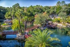 Древесины и сады озер кедр Стоковое Фото