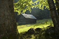 древесины кабины Стоковая Фотография