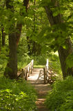 древесины моста Стоковое Фото