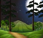 Древесины на сцене ночи бесплатная иллюстрация
