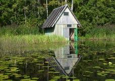 древесины озера Стоковая Фотография