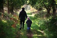 древесины прогулки осени Стоковая Фотография RF