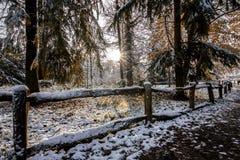 Древесины Apley стоковое фото rf