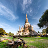Древний храм в Ayutthaya Таиланде, saphet si phra wat стоковое изображение rf