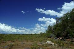 Древняя береговая линия 4 Стоковое фото RF