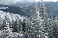 древняя зима пейзажа Стоковое Изображение RF