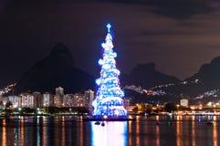 Древовидная структура рождественской елки в Рио-де-Жанейро Стоковое Фото