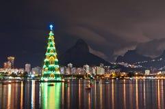 Древовидная структура рождественской елки в Рио-де-Жанейро Стоковые Фотографии RF