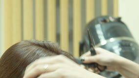 Дрессер и стрижка волос акции видеоматериалы