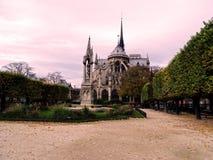 Другая сторона Нотр-Дам de Парижа, Франции стоковая фотография rf