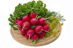 другие овощи редиски Стоковое Фото