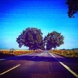 Другой момент на дороге Стоковое Изображение