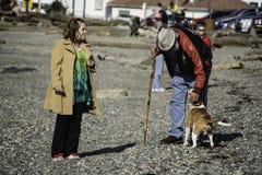 Дружелюбная собака на пляже Стоковые Изображения