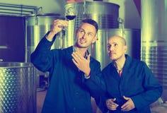 Дружелюбные 2 работника рассматривая образец вина Стоковые Изображения