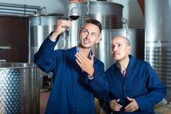 Дружелюбные 2 работника рассматривая образец вина Стоковая Фотография