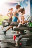 Друзья бежать на третбанах на спортзале Стоковые Фото