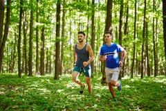Друзья бежать через лес Стоковая Фотография
