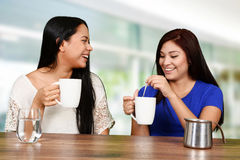 Друзья выпивая кофе Стоковое Изображение