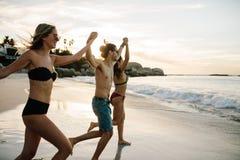 Друзья держа руки и ход к морю Стоковые Фото