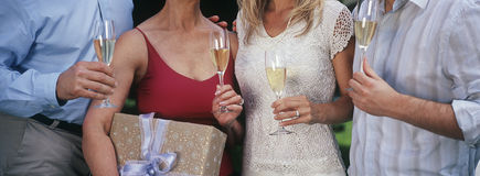 Друзья держа каннелюры Шампани Стоковое Изображение RF