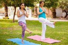 Друзья делая йогу на парке Стоковое фото RF