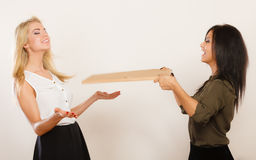 Друзья женщин имея ветер потехи дуя Стоковая Фотография RF