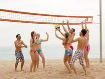 Друзья играя волейбол Стоковые Изображения RF