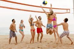Друзья играя волейбол Стоковое Изображение