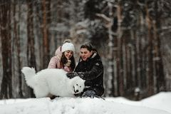 Друзья играя с щенком в парке стоковое фото rf