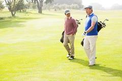 Друзья игрока в гольф идя и беседуя Стоковая Фотография