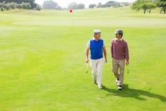 Друзья игрока в гольф идя и беседуя Стоковые Фотографии RF