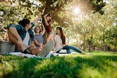 Друзья имея большое время на пикнике Стоковое Фото