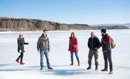 Друзья имея потеху на замороженном озере Стоковые Фотографии RF