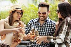 Друзья наслаждаются в парке Стоковое фото RF
