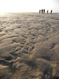 друзья пляжа Стоковое фото RF