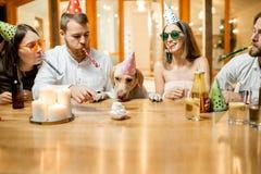 Друзья празднуя день рождения ` s собаки Стоковая Фотография RF