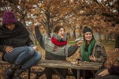 Друзья разговаривая и играя с листьями в осени Стоковые Фотографии RF