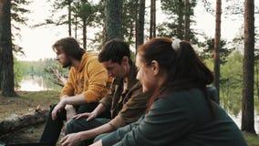 Друзья собирают сидеть на упаденном дереве в лесе на пикник, говоря сток-видео