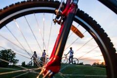 Друзья с велосипедами на зеленом луге Стоковые Изображения RF