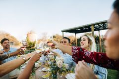 Друзья с пить во время партии обеда Стоковое Фото