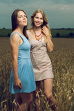 Друзья усмехаясь в поле Стоковое фото RF