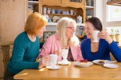 Друзья холодного среднего возраста женские имея закуски Стоковая Фотография