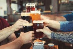 Друзья clinking стекла с пивом стоковые фотографии rf