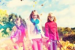 Друзья romping в листьях сбора бросая листву Стоковое Изображение