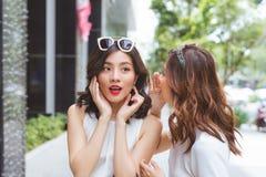 2 друз женщины ходя по магазинам совместно и говоря Стоковые Фотографии RF